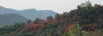 Paesaggio autunnale della Sabina (2005)